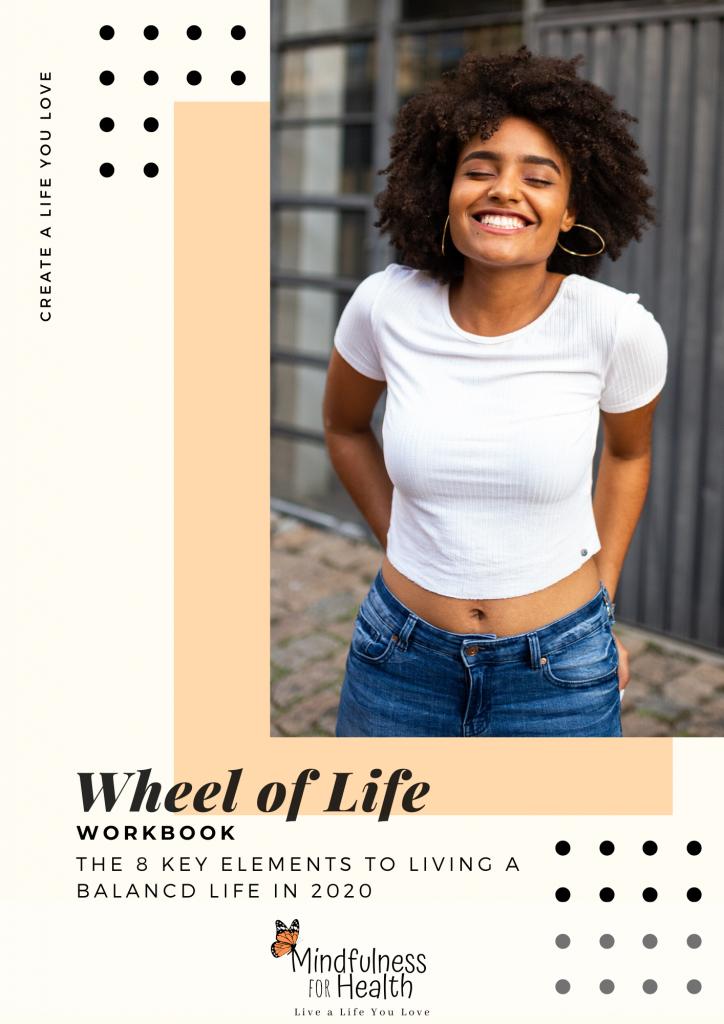 Wheel of Life workbook cover