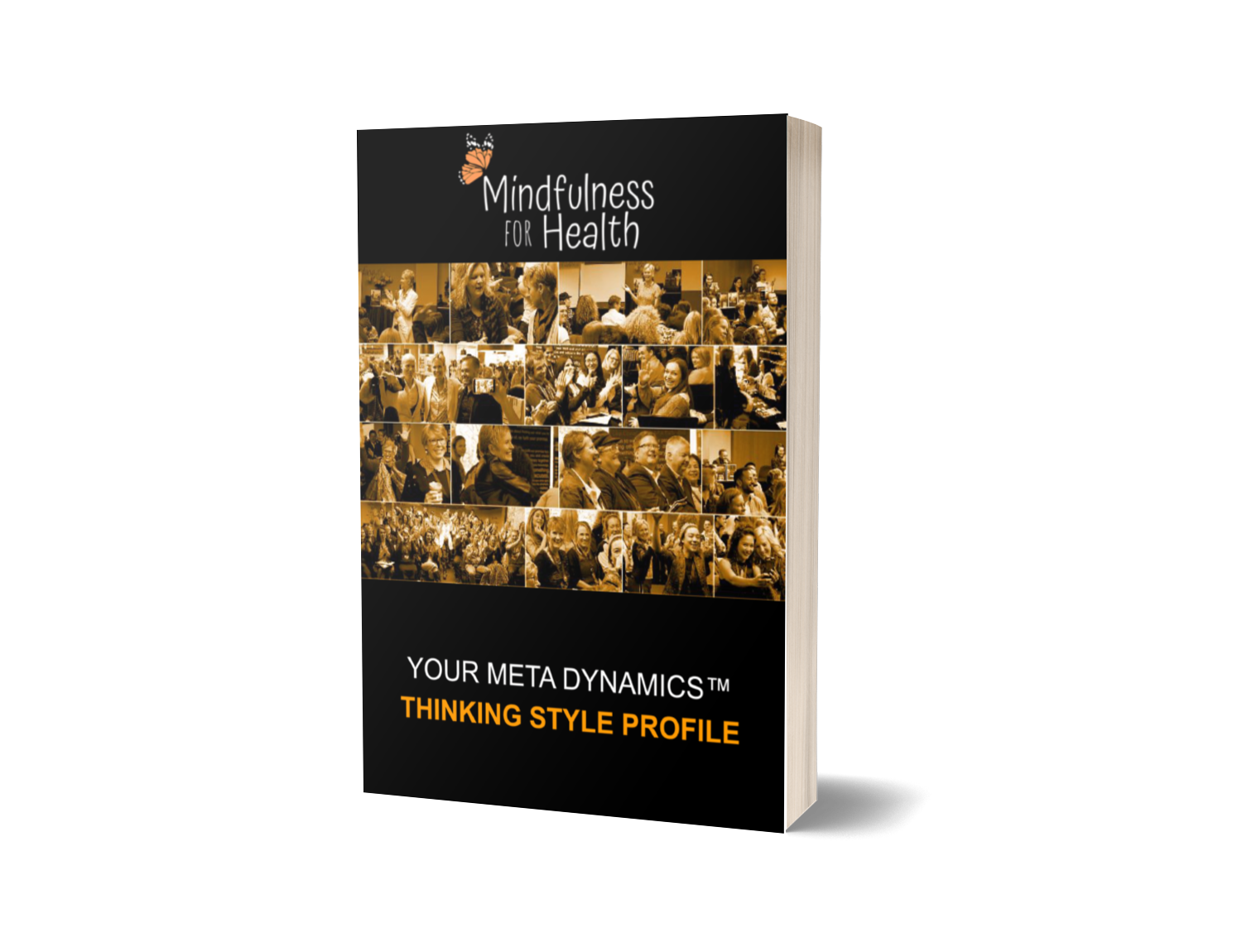 Thinking Style Profile Book Cover